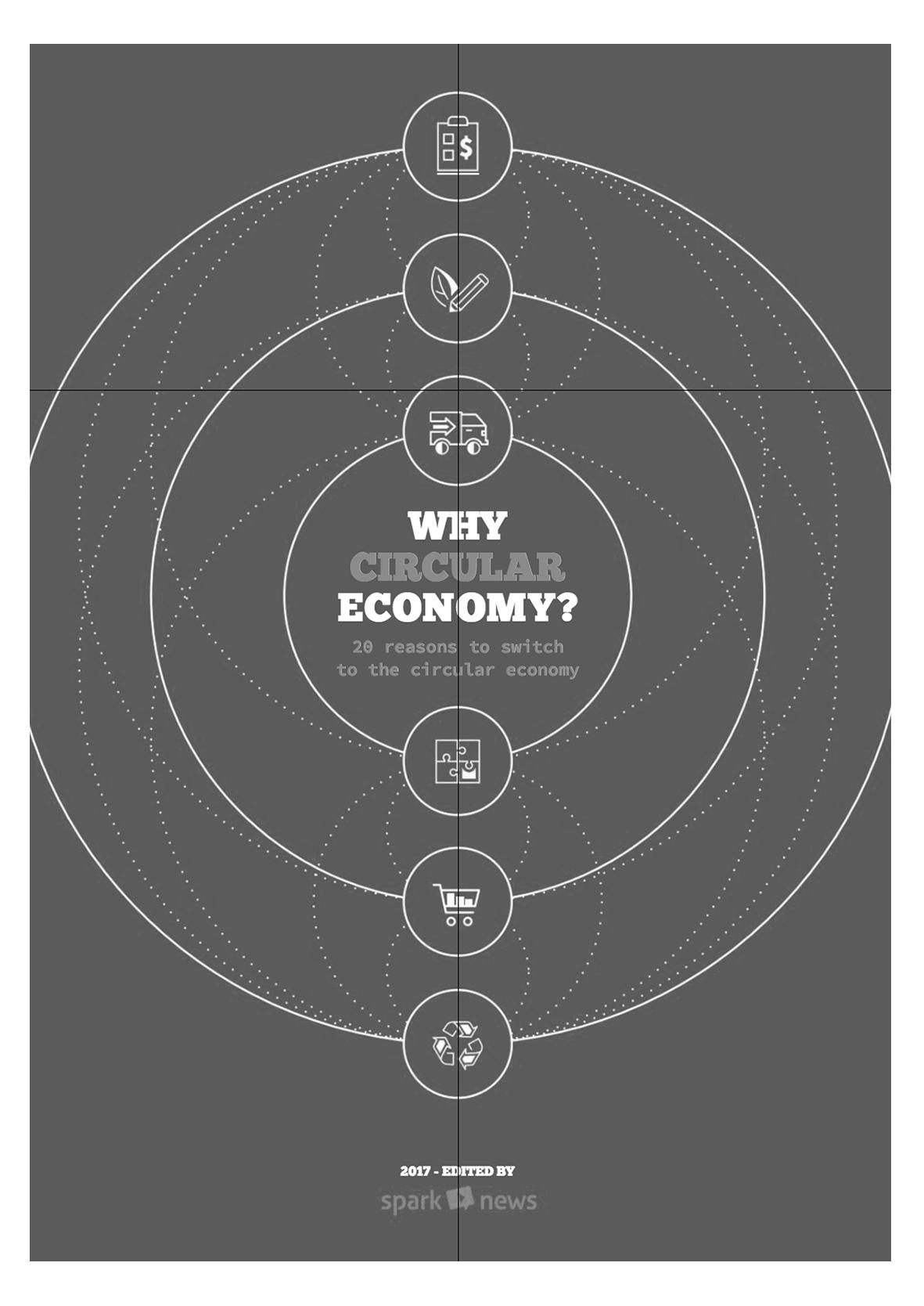 Why circular economy?